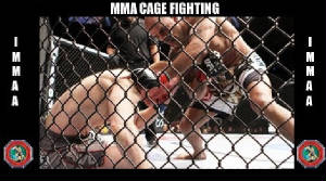 cagefighting.jpg